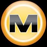 Paradojas y cuestiones abiertas: del establishment del contenido a Megaupload